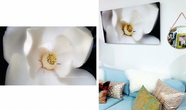 Flower Art Print l Anna Killgour-Wiilson
