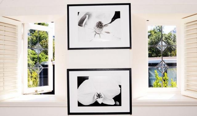 Flower Art Prints l Anna Killgour-Wilson