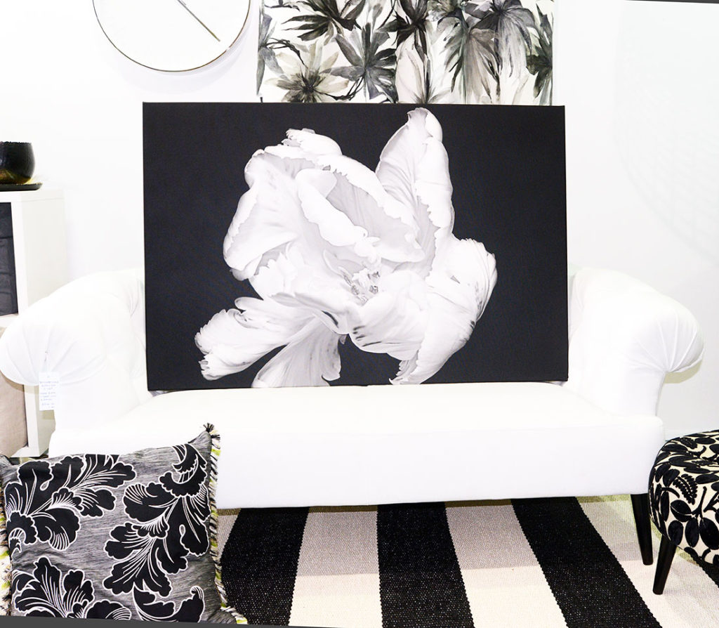 Black and White Limited Edition Print