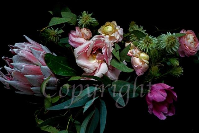 Giclee Flower Art Print l Anna Killgour-Wilson l Canvas Print