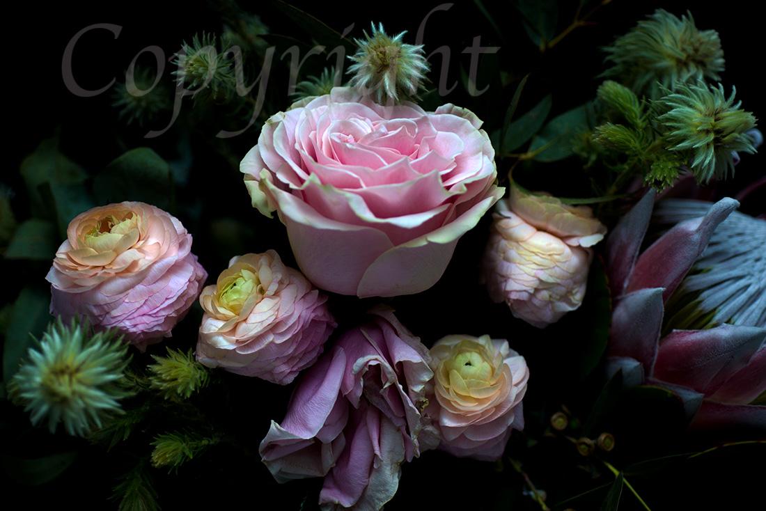 Giclee Flower Fine Art Print