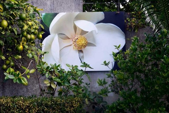 Flower Art Print l Anna Killgour-Wilson