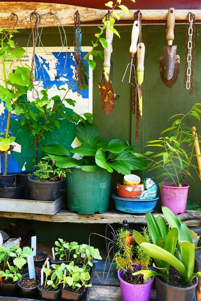 "Potting ""shed"""
